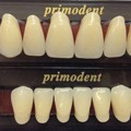 Monster Maker Artificial Teeth Set Large