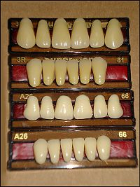 artificial-acrylic-teeth.jpg